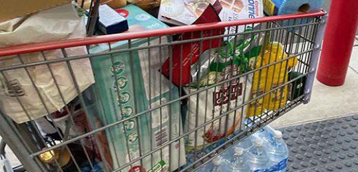 Costco Bulk buys - our full trolley