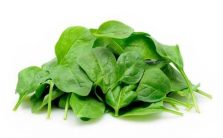 baby-spinach